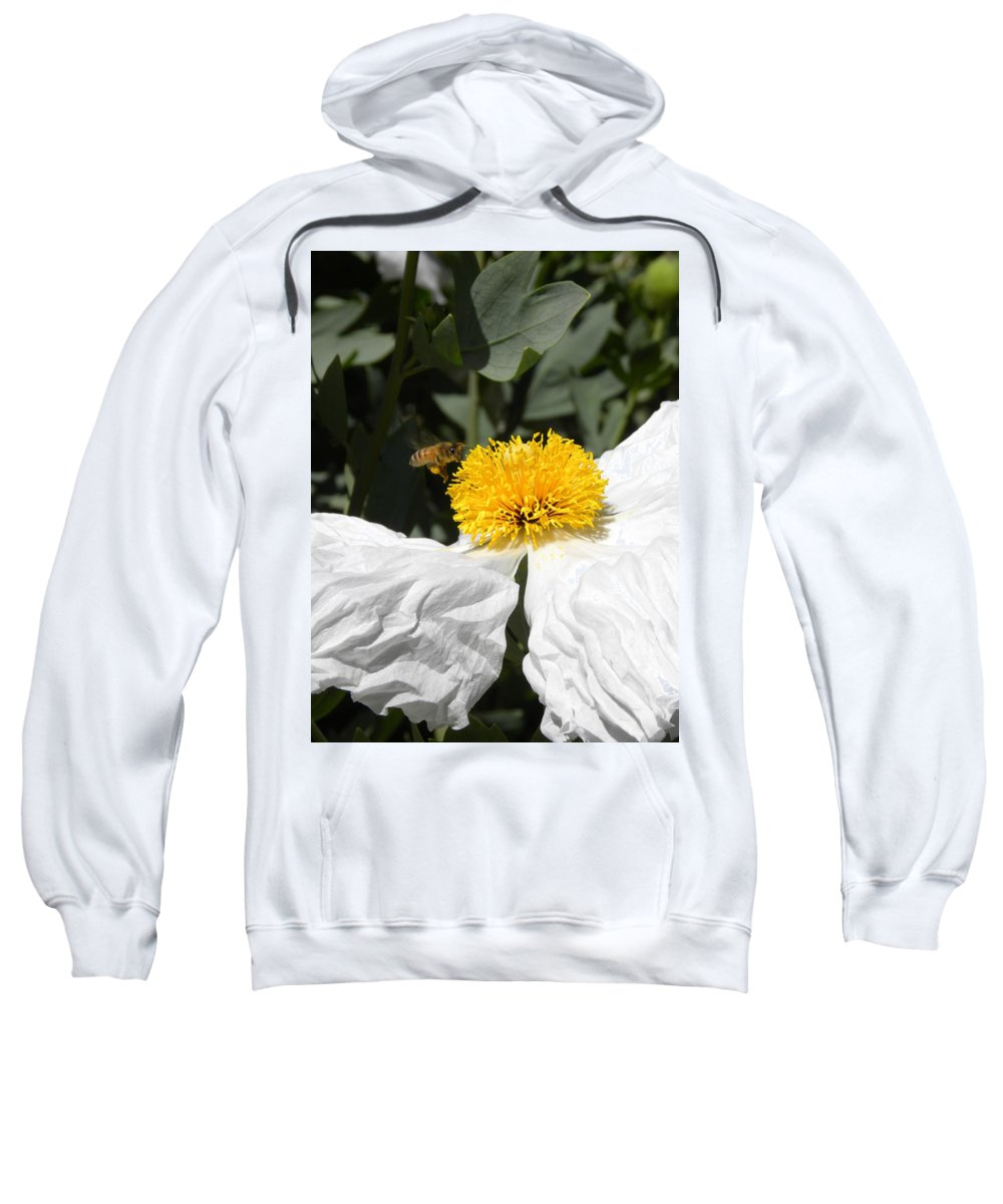 Flower Sweatshirt featuring the photograph White Poppy by Peggy McDonald