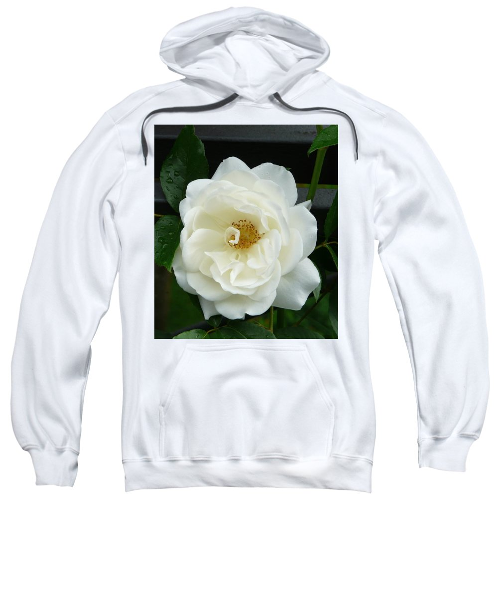 Rose Sweatshirt featuring the photograph White Rose by Valerie Ornstein
