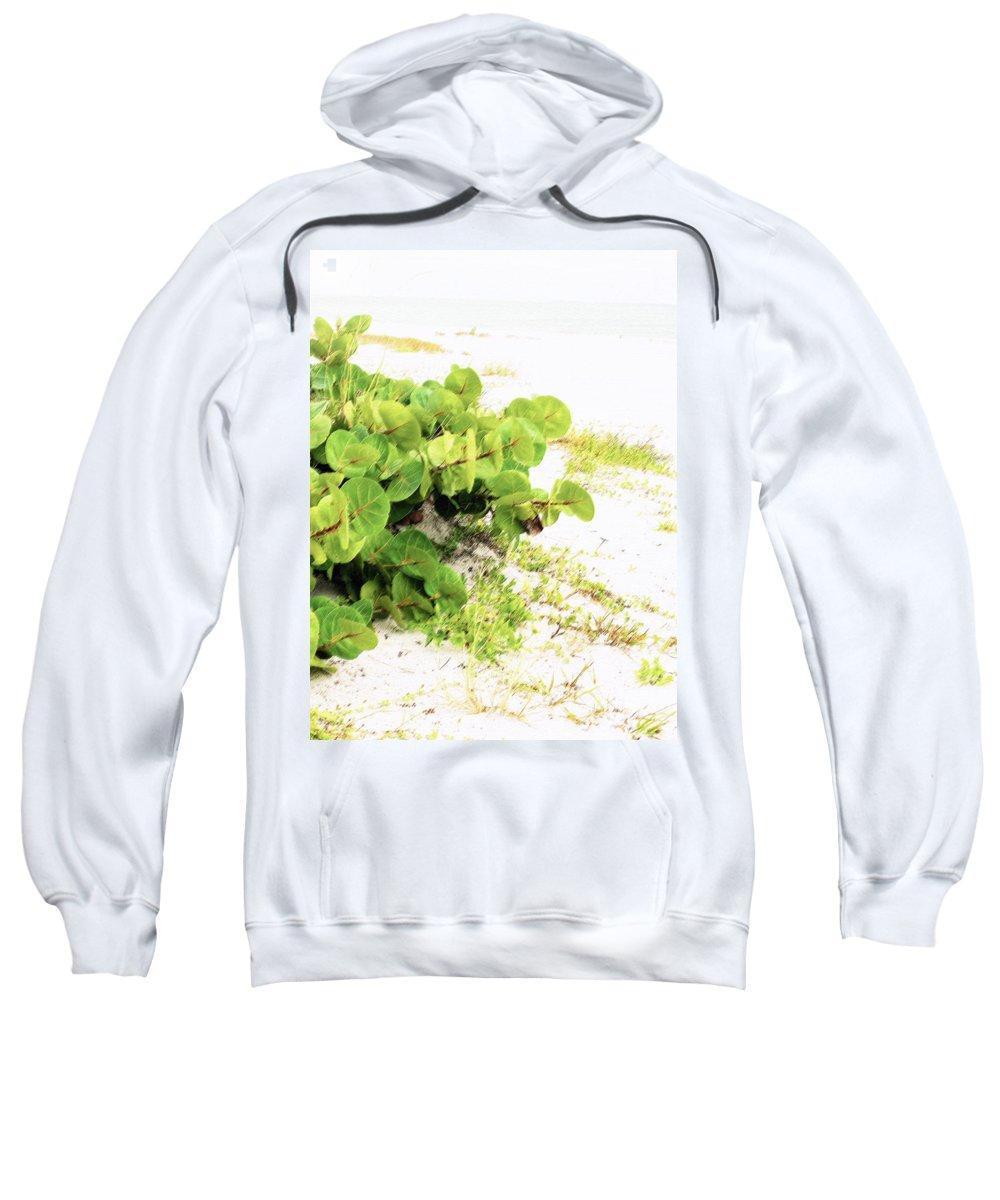 Florida Sweatshirt featuring the photograph White Sand Beach by Ian MacDonald