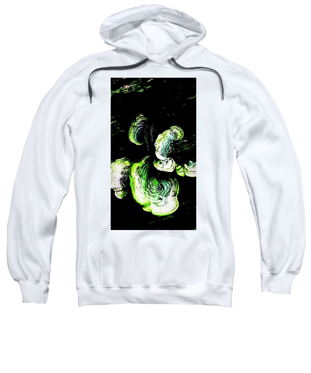 Tree Sweatshirt featuring the photograph Wild Tree Growth by Joy Newman