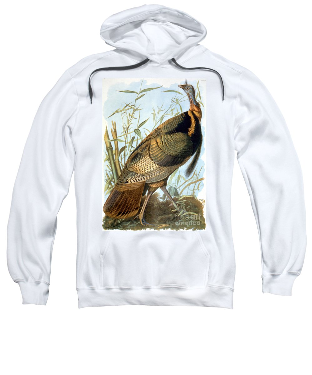 Aodng Sweatshirt featuring the photograph Wild Turkey by Granger
