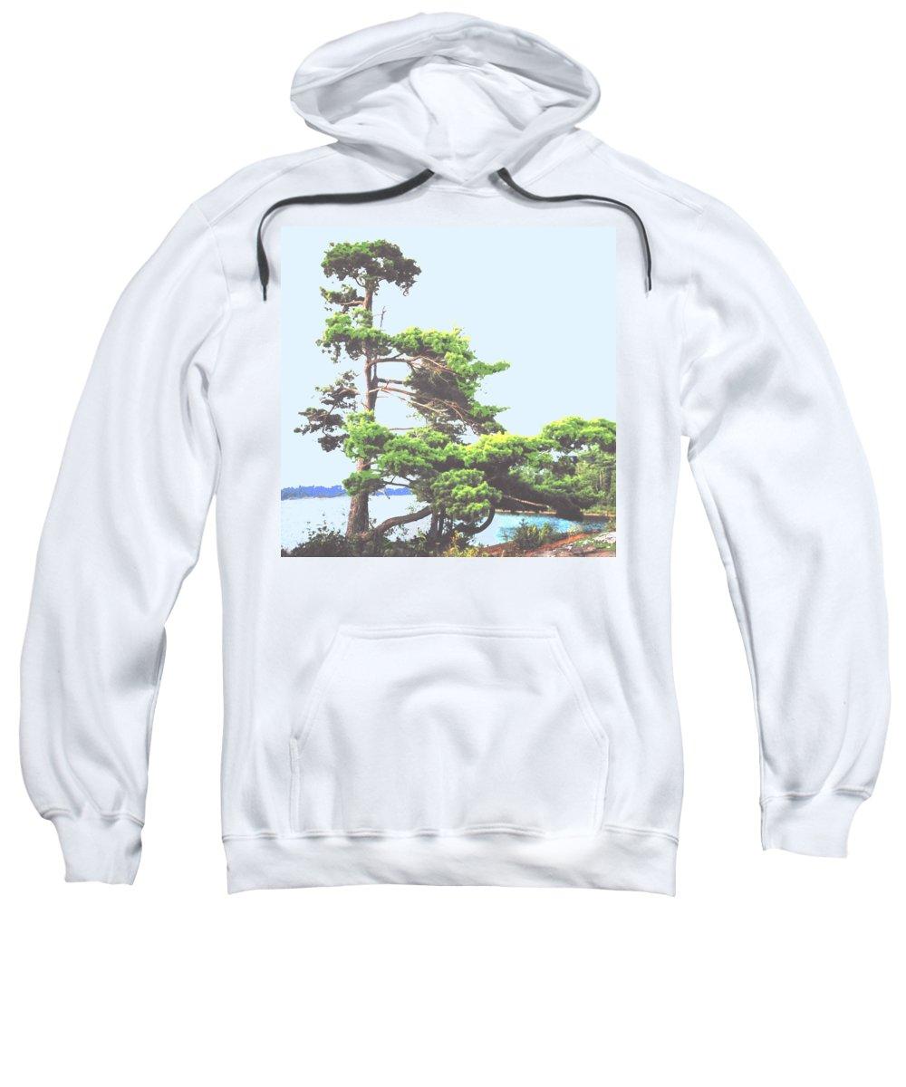 Pine Sweatshirt featuring the photograph Windswept by Ian MacDonald