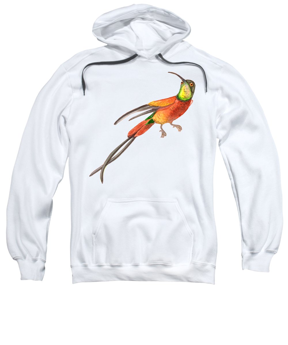 Rain Forest Hooded Sweatshirts T-Shirts