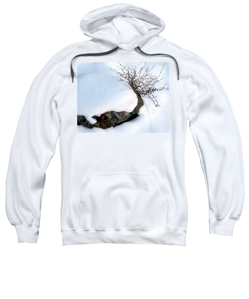 Winter Sweatshirt featuring the photograph Winter Finery by Will Borden