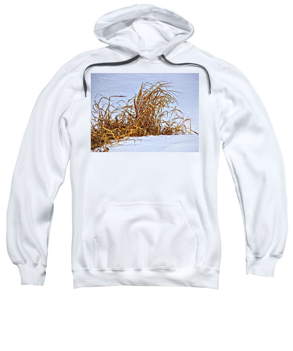 Grasses Sweatshirt featuring the photograph Winter Grasses by Steve Harrington