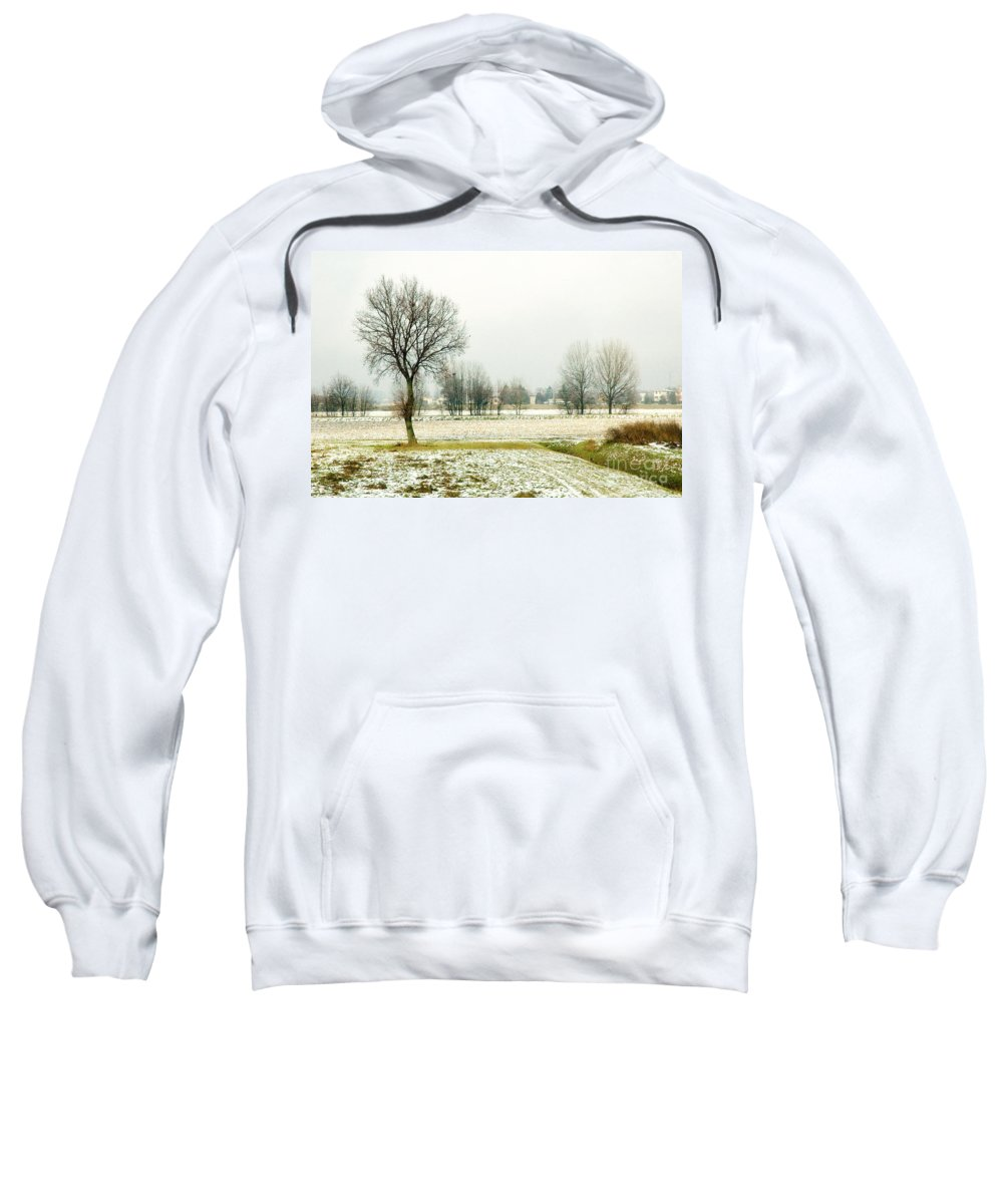 Bare Sweatshirt featuring the photograph Winter Trees by Silvia Ganora