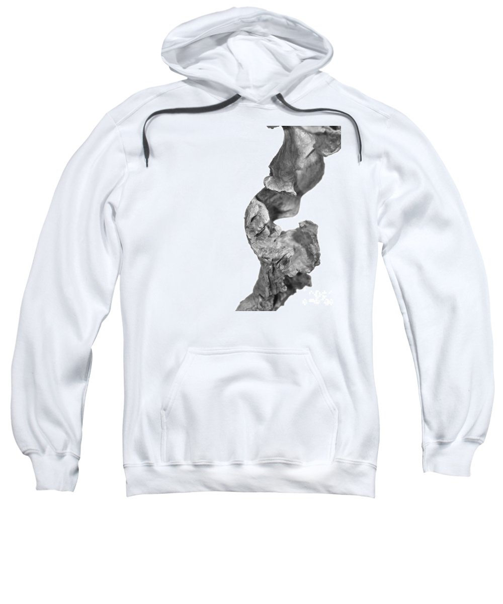 (c) Paul Davenport Sweatshirt featuring the photograph wudu 2 XXXXII by Paul Davenport