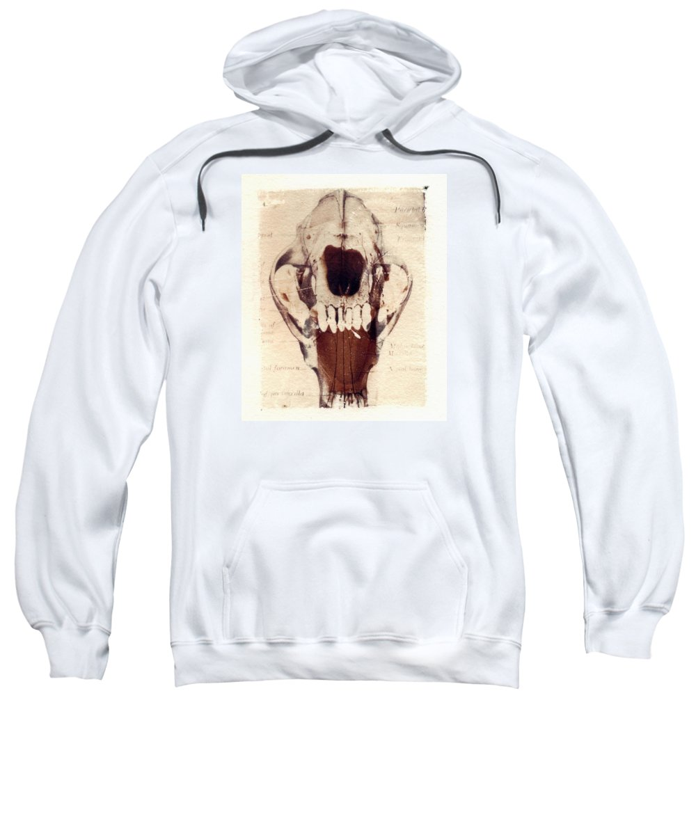 Polaroid Sweatshirt featuring the photograph X ray terrestrial by Jane Linders