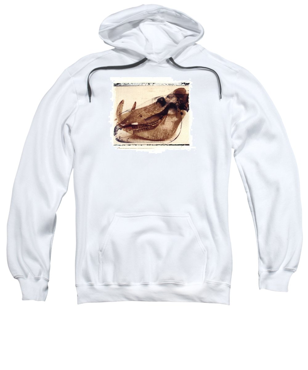 Polaroid Transfer Sweatshirt featuring the photograph X Ray Terrestrial No. 6 by Jane Linders