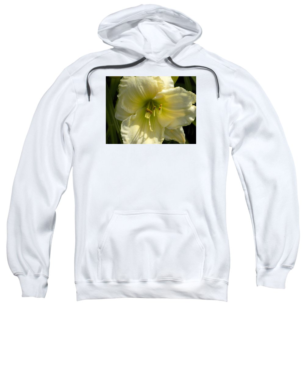 Daylily Sweatshirt featuring the photograph Yellow And White Daylily by William Tasker