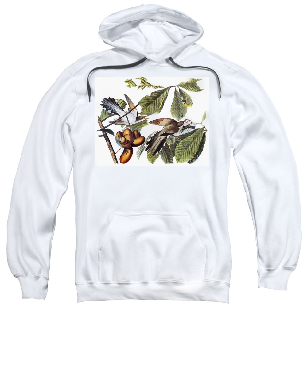 1827 Sweatshirt featuring the photograph Yellow-billed Cuckoo by Granger