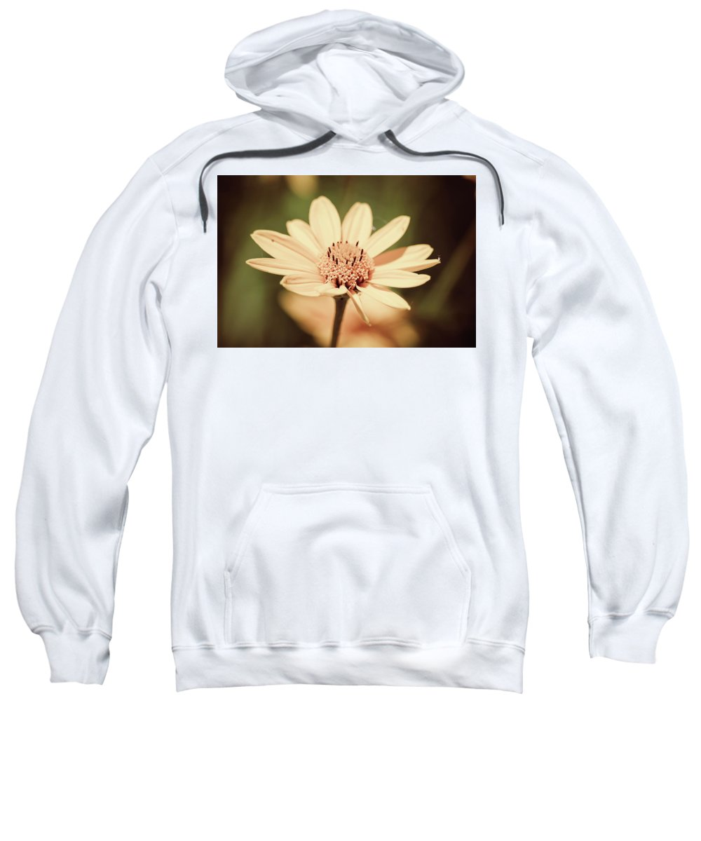 Yellow Sweatshirt featuring the photograph Yellow Sunflower by Maxwell Dziku