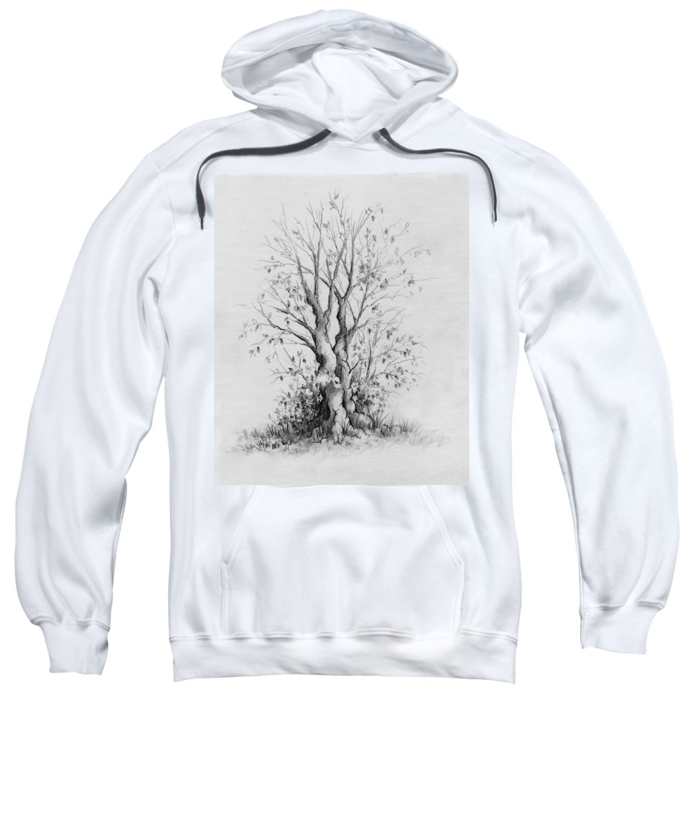 Pencil Sweatshirt featuring the drawing Young Tree by Rachel Christine Nowicki
