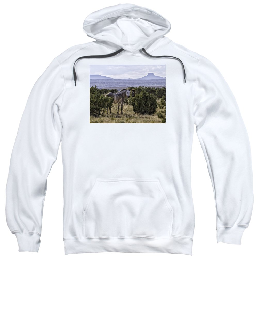 Mustang Sweatshirt featuring the photograph Your'e Safe Here by Elizabeth Eldridge