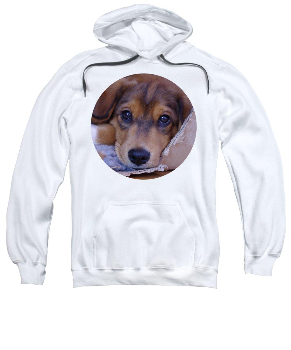 Crossbreed Hooded Sweatshirts T-Shirts