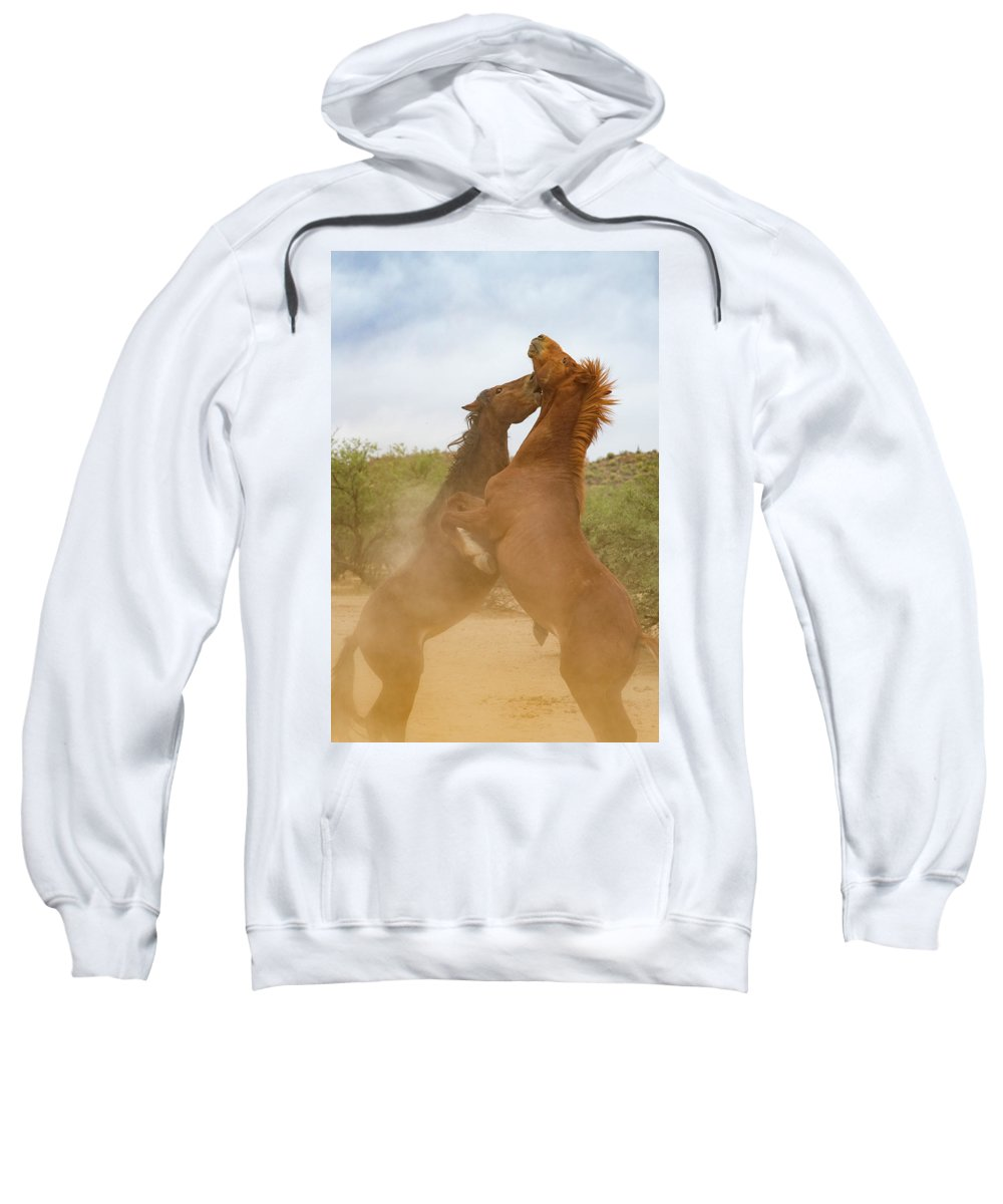 Arizona Sweatshirt featuring the photograph The Confrontation by Cathy Franklin