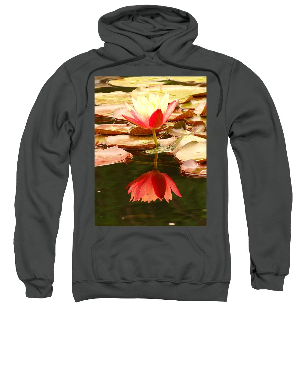 Pink Sweatshirt featuring the photograph 0116 by Onyx Armstrong