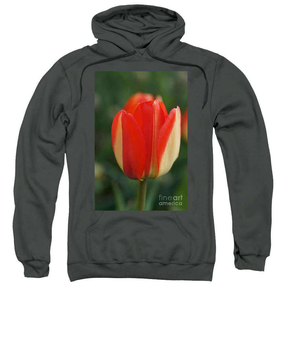 Tulips Sweatshirt featuring the photograph All Alone by Jeffery L Bowers