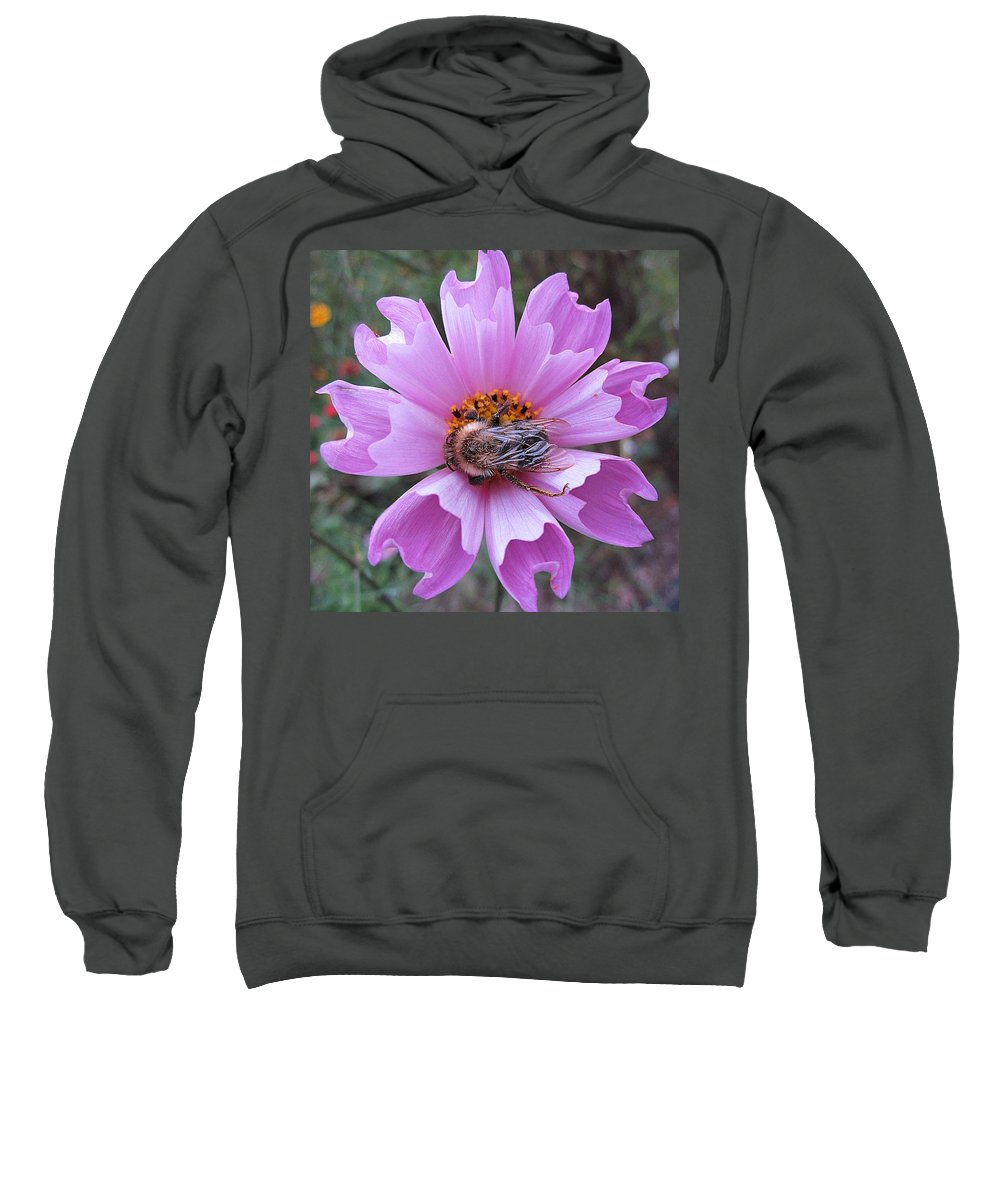 Bee Sweatshirt featuring the photograph Bee On Cosmos by MTBobbins Photography
