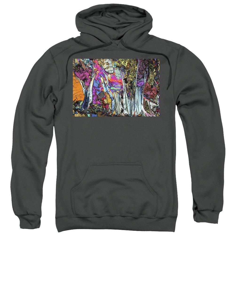 Aesthetic Sweatshirt featuring the photograph Blueschist by Bernardo Cesare