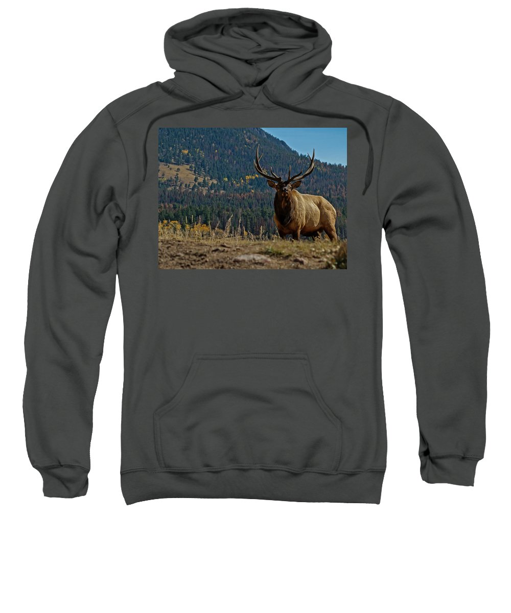 Bull Elk Sweatshirt featuring the photograph Bull Elk by Ernie Echols
