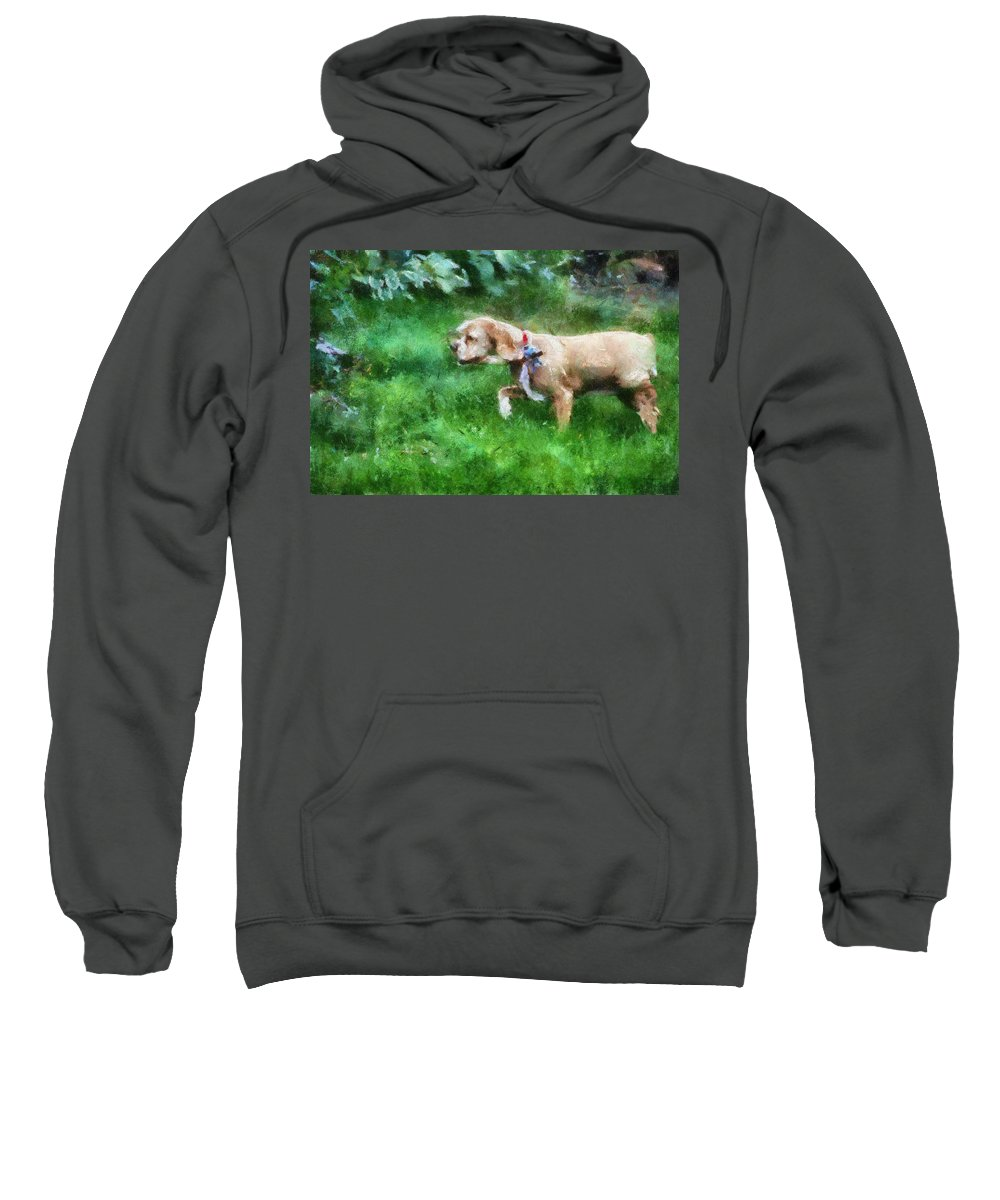 Spaniel Sweatshirt featuring the photograph Cocker Spaniel Outside 08 by Thomas Woolworth