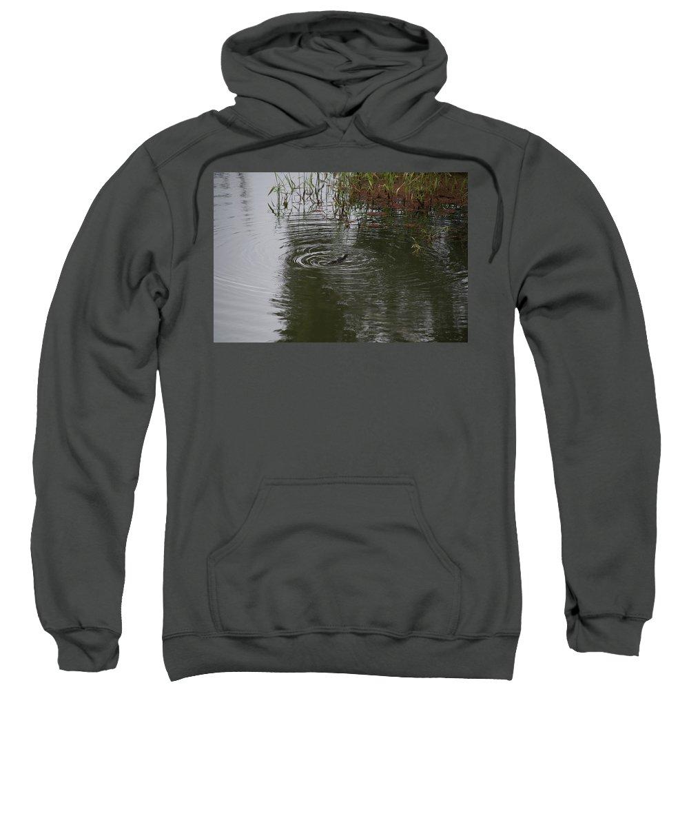 Yungaburra Atherton Tableland Sweatshirt featuring the digital art Duck Billed Platypus Swimming In The River by Carol Ailles