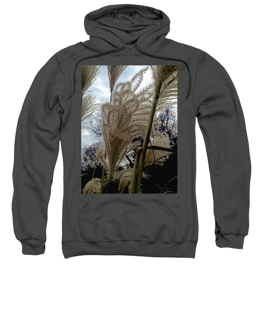 Fall Sweatshirt featuring the photograph Etched by Joseph Yarbrough