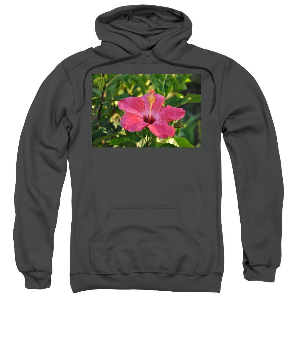 Central Park Sweatshirt featuring the photograph Flower by George Fredericks