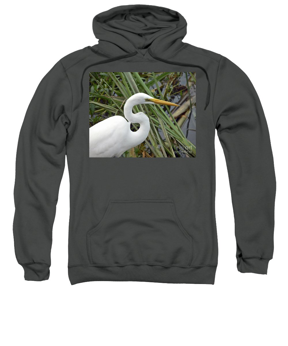 Egret Sweatshirt featuring the photograph Great Egret Close Up by Al Powell Photography USA