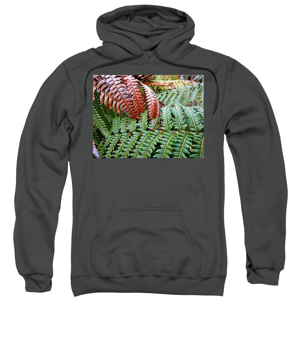 Hawaii Sweatshirt featuring the photograph Hapu'u Frond by Lehua Pekelo-Stearns