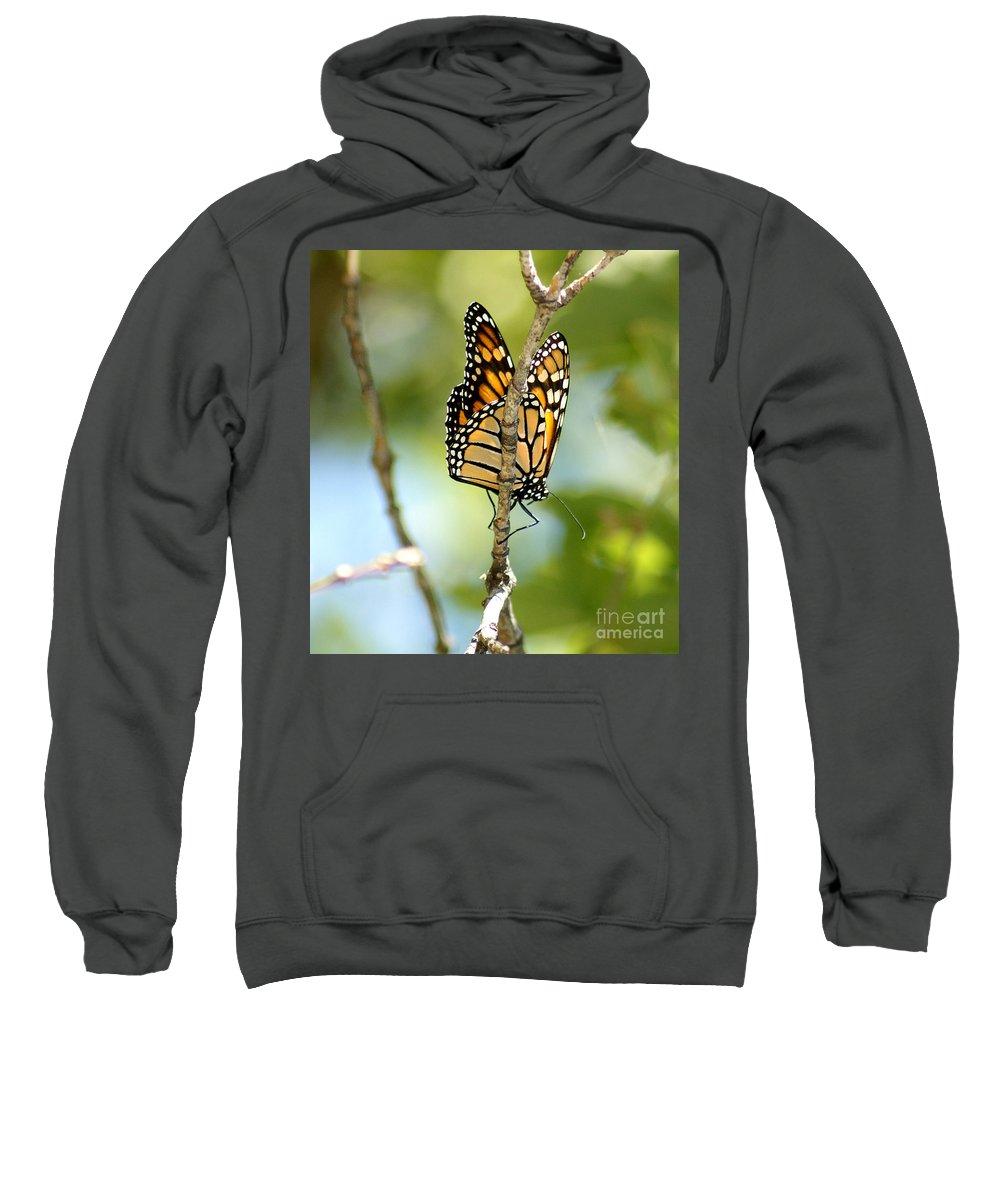 Butterfly Sweatshirt featuring the photograph Monarch by Lori Tordsen