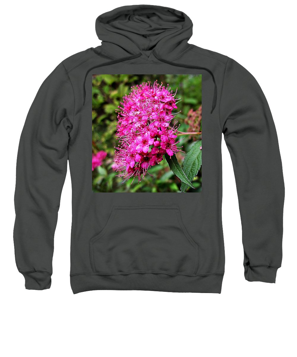 Pink Spirea Sweatshirt featuring the photograph Pink Spirea by MTBobbins Photography
