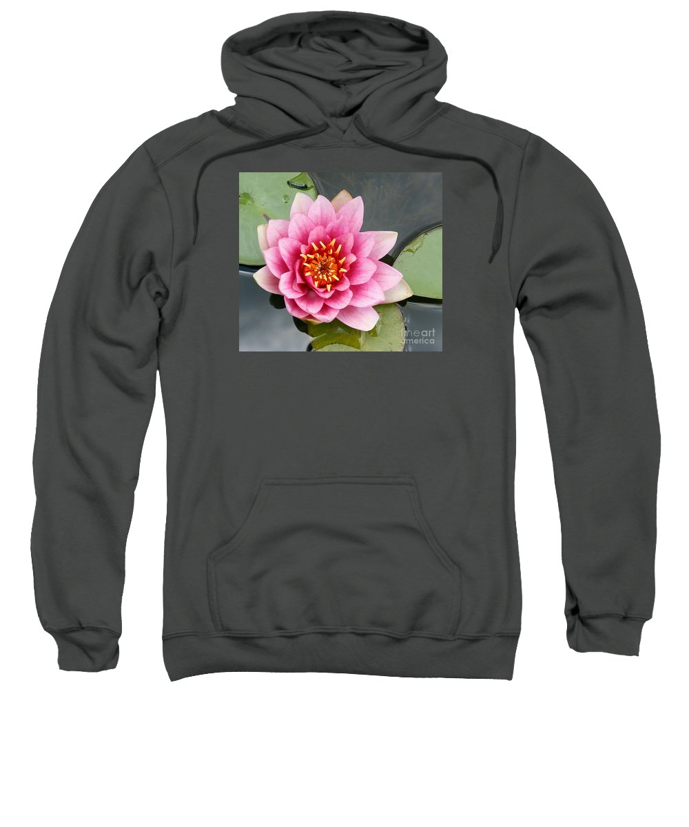 Lily Sweatshirt featuring the photograph Pink Waterlily by Christiane Schulze Art And Photography