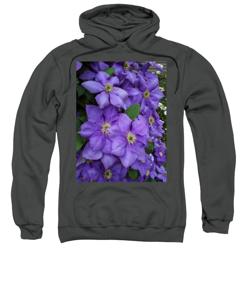 Garden Sweatshirt featuring the photograph Purple Clematis by Amy Porter