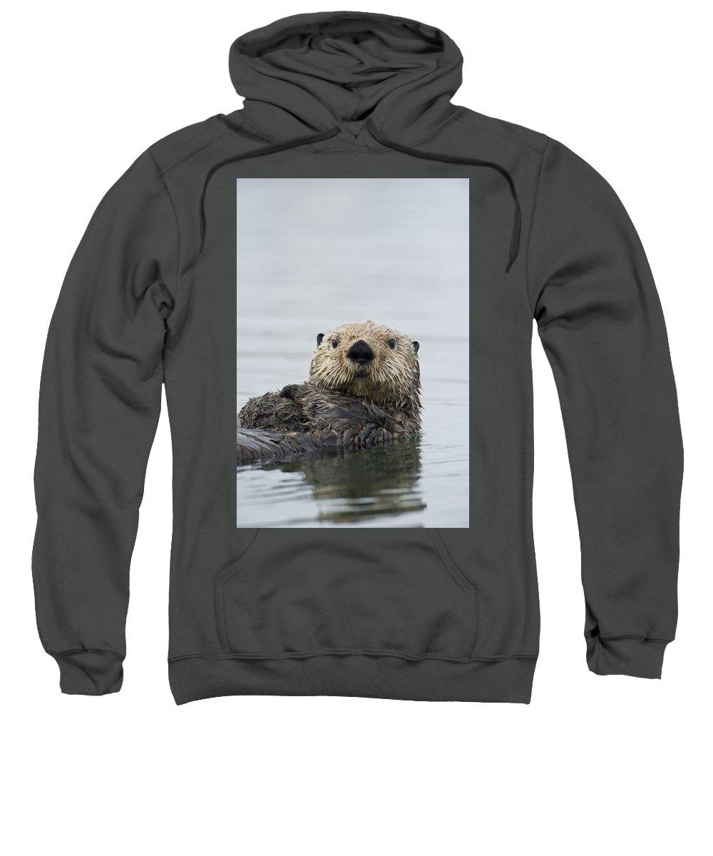 Vertebrata Sweatshirts