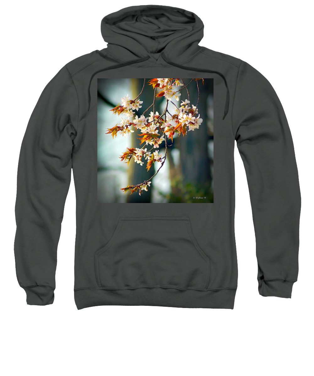2d Sweatshirt featuring the photograph Spring Blossoms by Brian Wallace