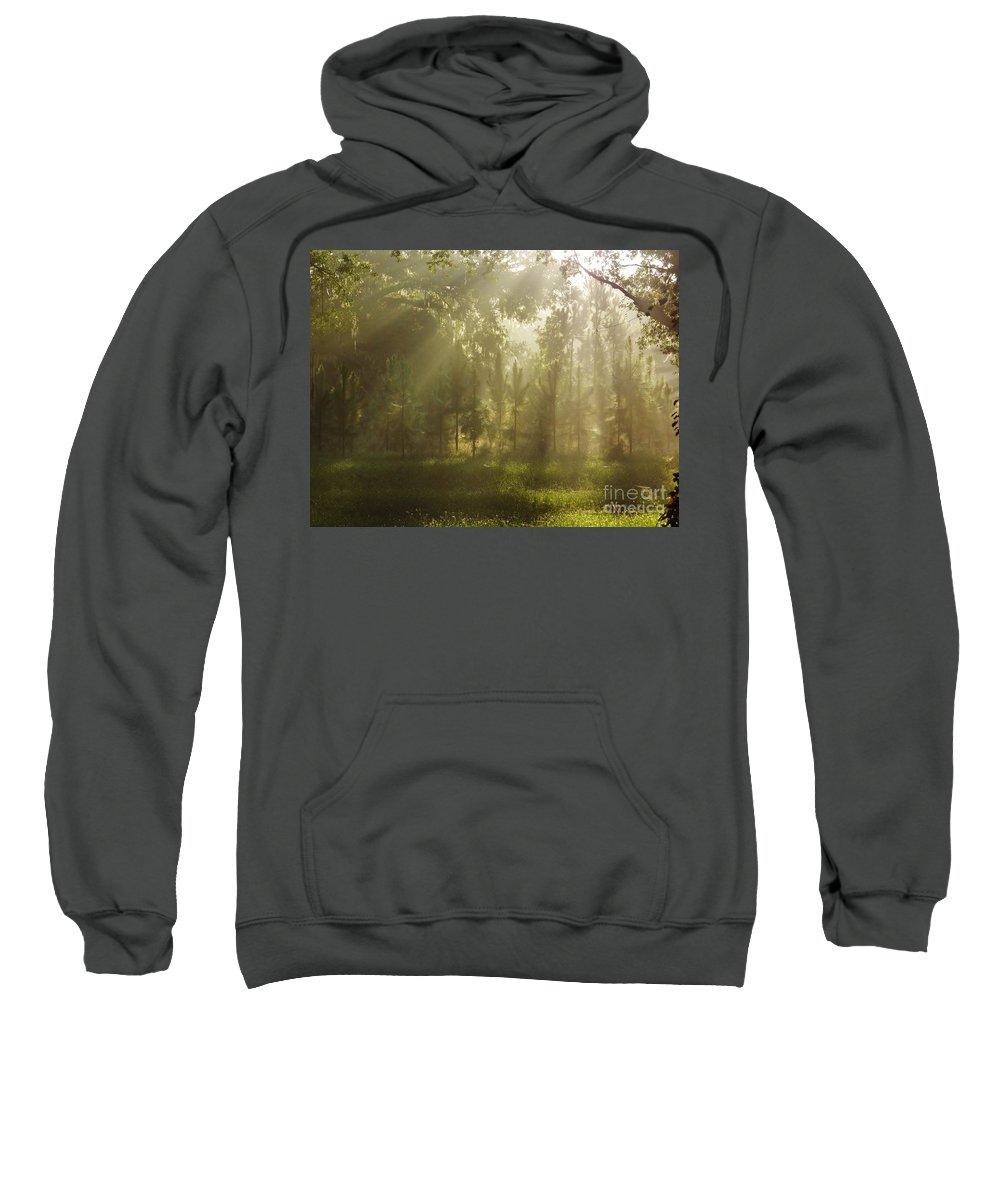 Sunshine Sweatshirt featuring the photograph Sunshine Morning by D Hackett