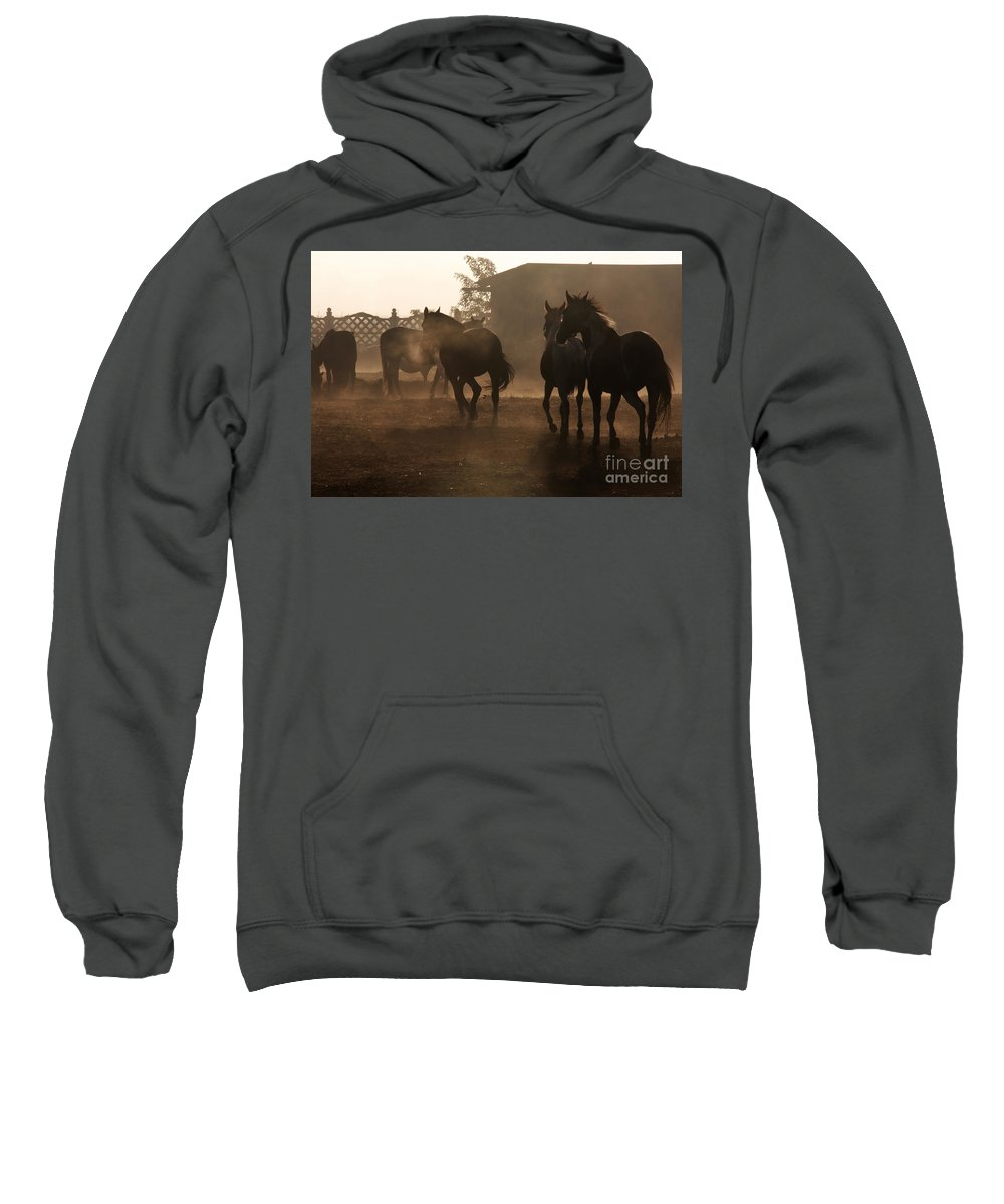 Misty Morning Sweatshirt featuring the photograph The Misty Morning by Angel Tarantella