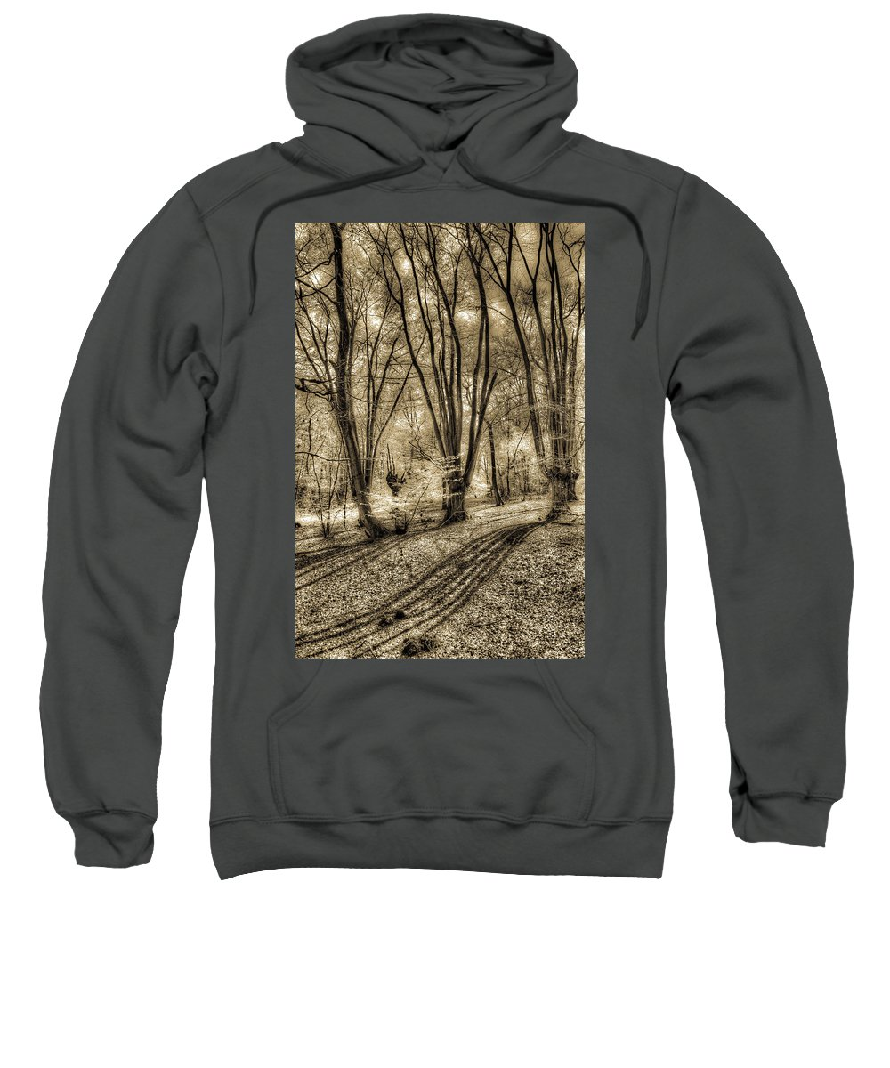 Forest Sweatshirt featuring the photograph The Spring Forest by David Pyatt