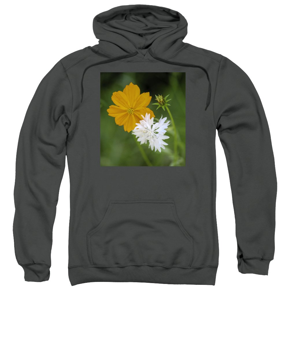 Color Digital Photography Sweatshirt featuring the photograph Wild Flowers by Paul Shefferly