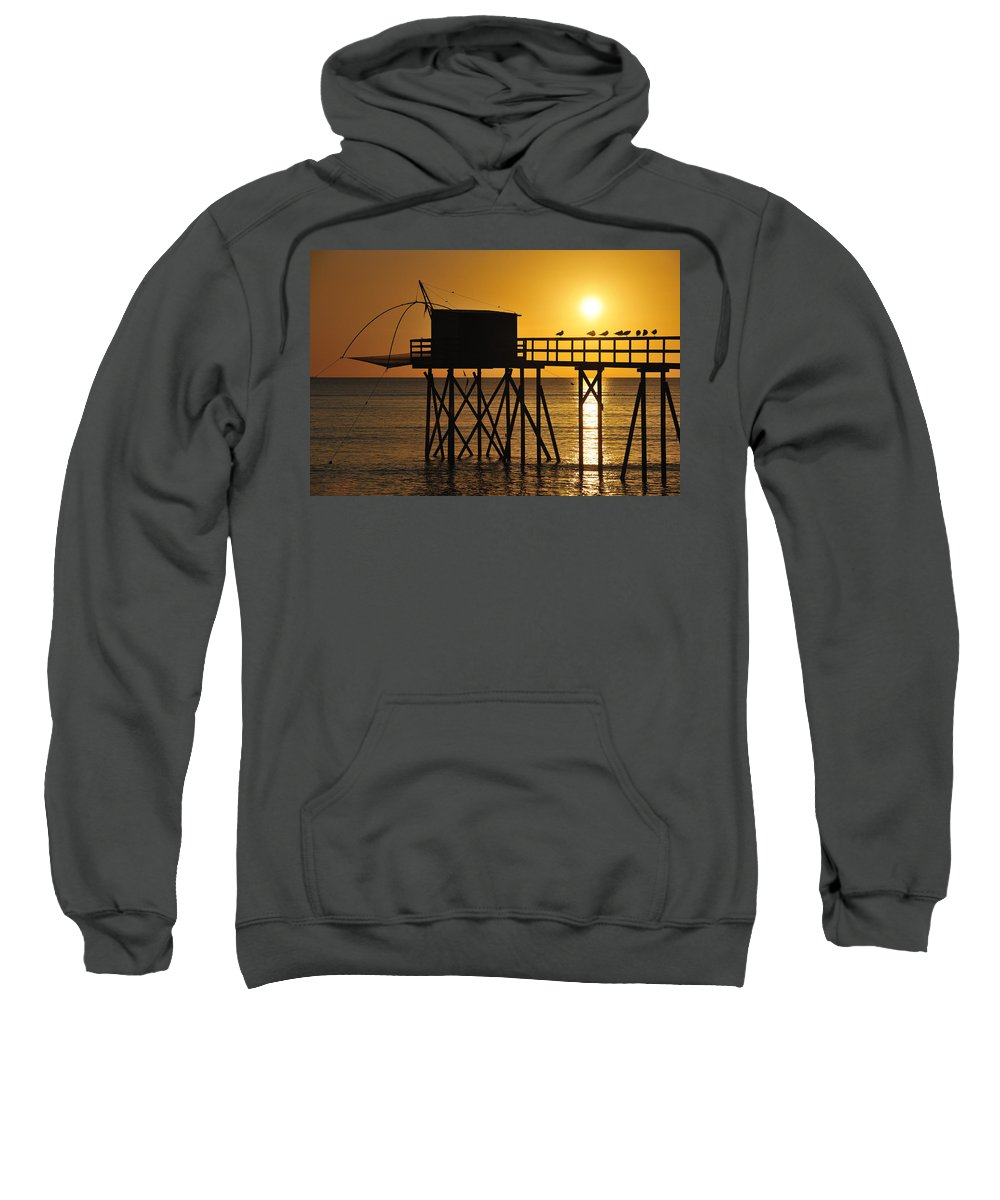 Carrelet Sweatshirt featuring the photograph 110922p030 by Arterra Picture Library