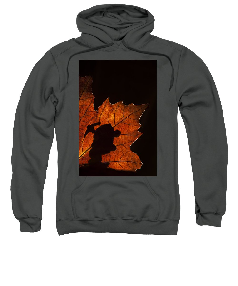 Dwarf Sweatshirt featuring the photograph 131114p315 by Arterra Picture Library