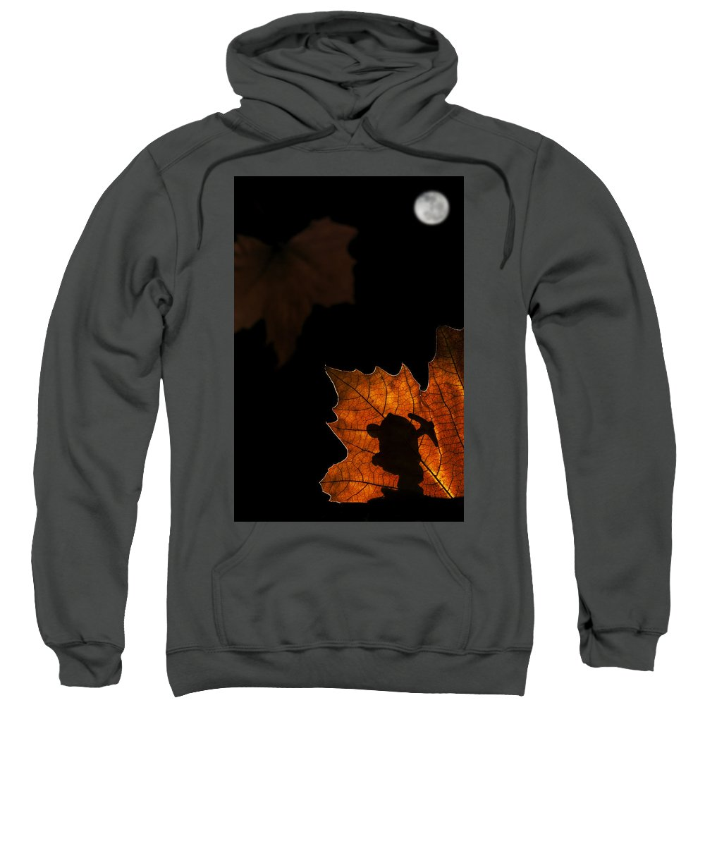 Dwarf Sweatshirt featuring the photograph 131114p324 by Arterra Picture Library