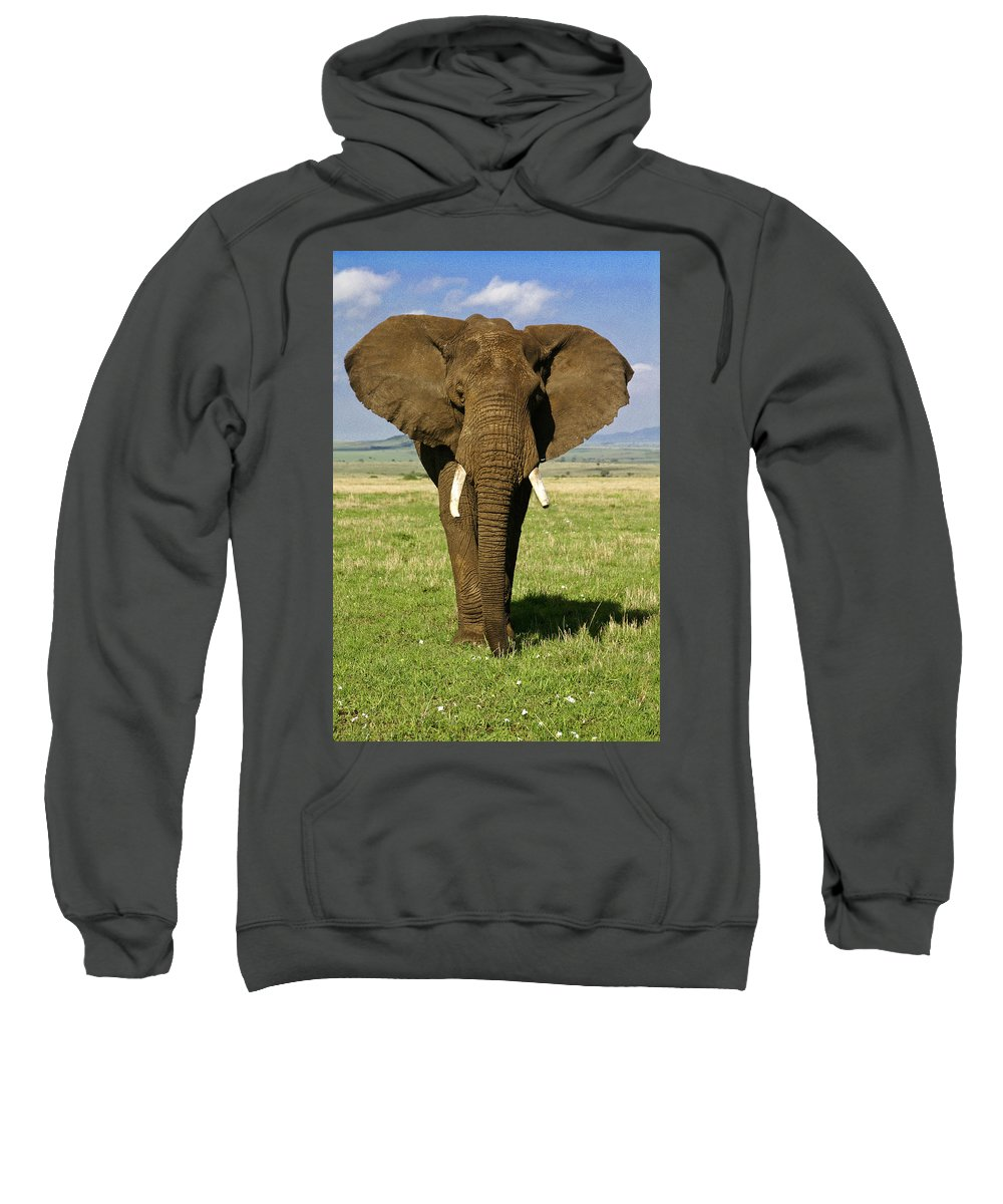 Africa Sweatshirt featuring the photograph Big Boy by Michele Burgess
