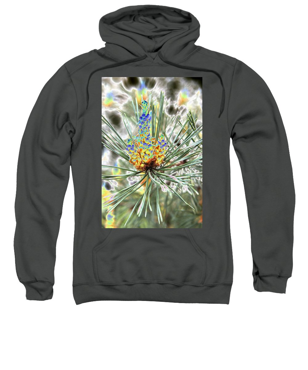 Pine Sweatshirt featuring the photograph Blue Shadow by Christiane Schulze Art And Photography