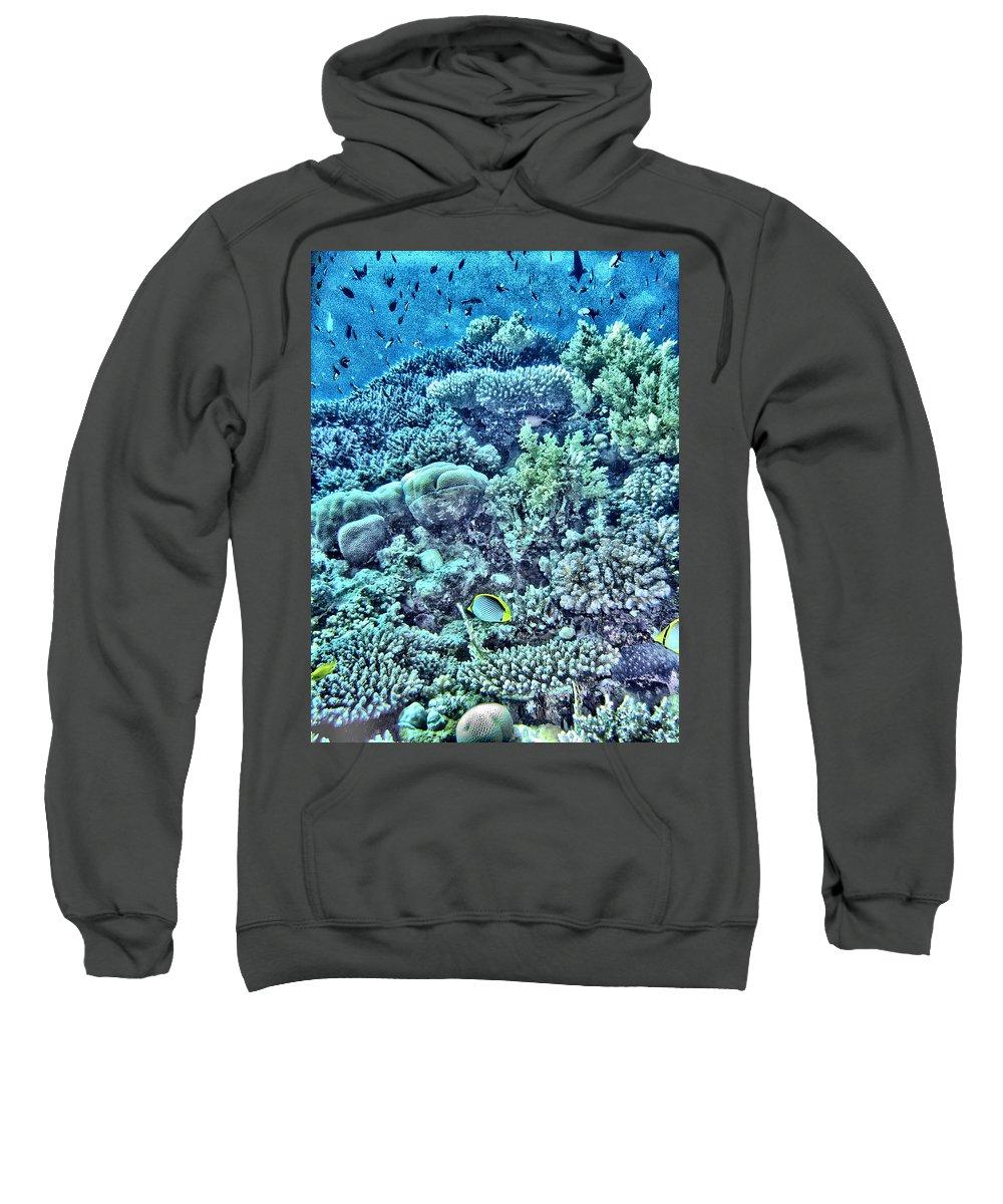 Abstract Sweatshirt featuring the digital art Coral Reef by Roy Pedersen
