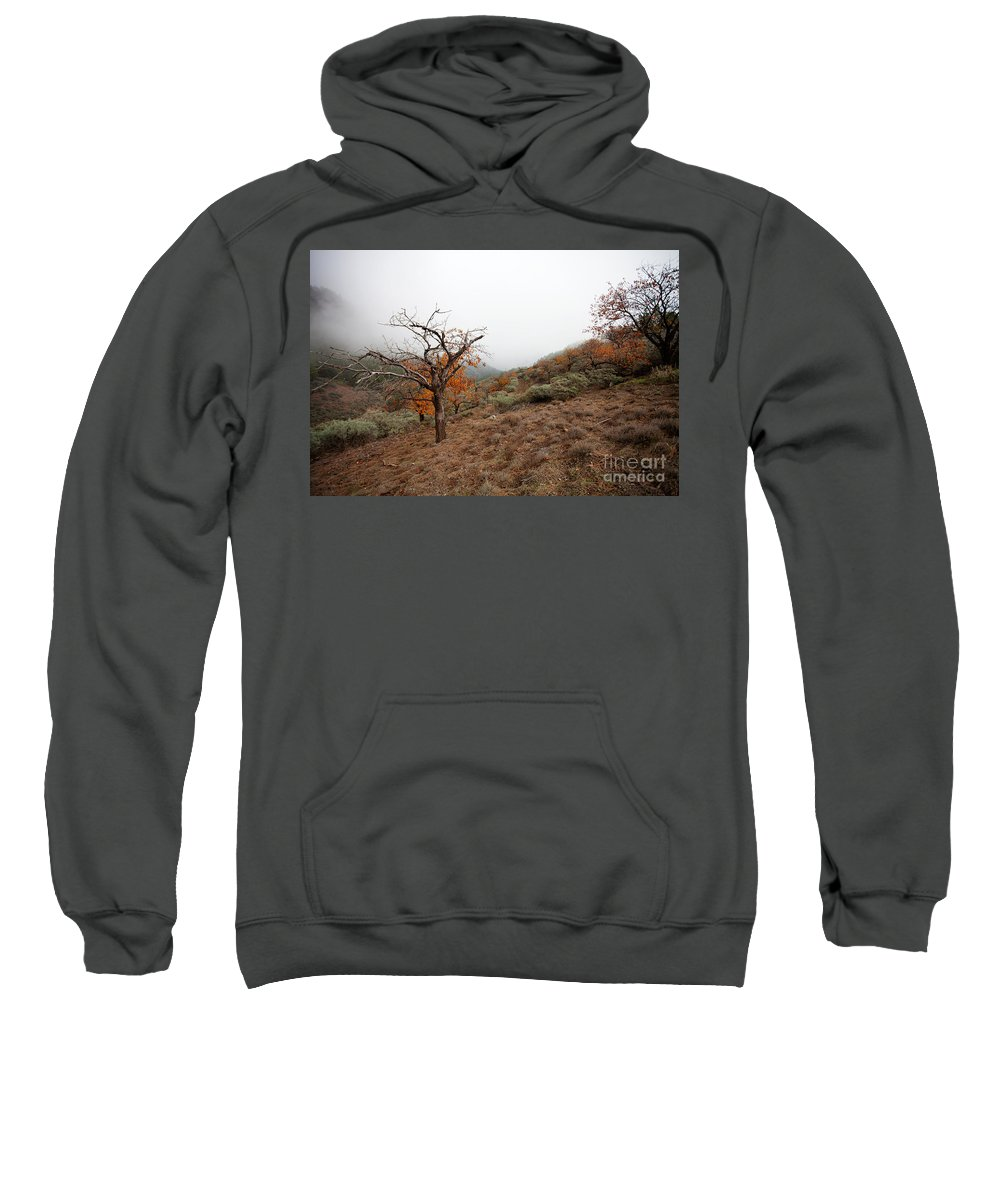 Autumn Sweatshirt featuring the photograph Foggy Landscape by Kati Finell