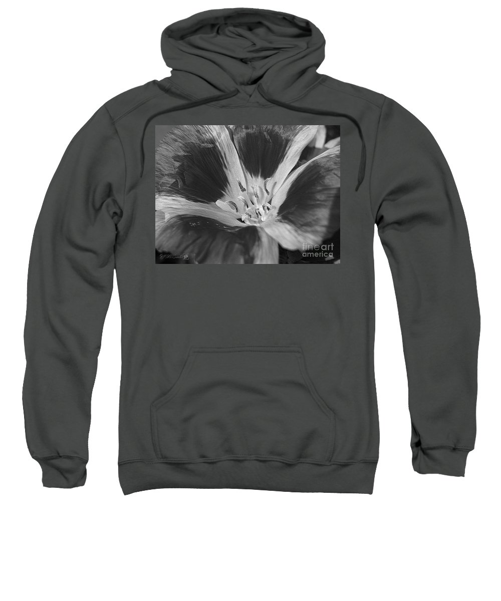 Mccombie Sweatshirt featuring the photograph Godetia Named Lilac Rose by J McCombie