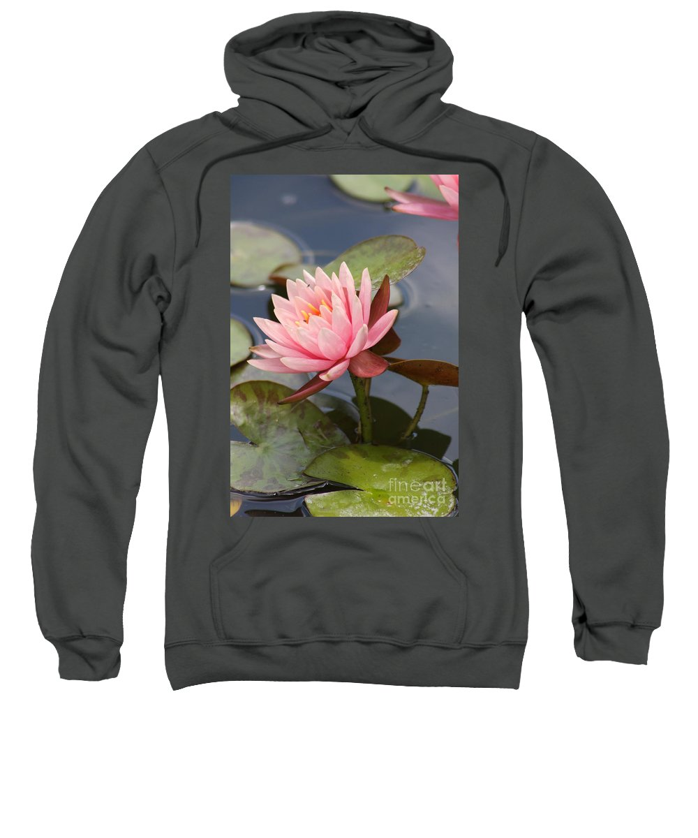 Waterlily Sweatshirt featuring the photograph Look At Me by Christiane Schulze Art And Photography